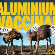 Alu-Vaccins-E3M-1024par768